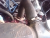 img00055-20090729-1759